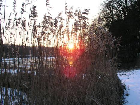 sundown in the winter 2