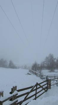 a foggy day in Moisburg