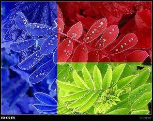 RGB by Cunyor