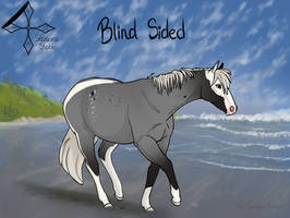 4SS Blind Sided