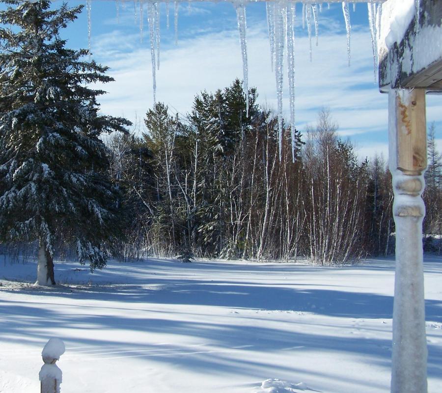 winter 2 by Cainamoon