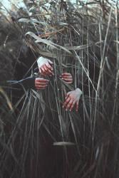 Silence in November IV by MariaPetrova