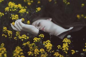 Flowers of Death II by MariaPetrova