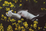 Flowers of Death II