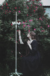 Garden of Sorrows VI by MariaPetrova