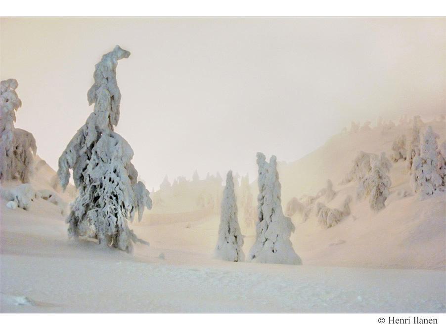 Wintery dream by Neukku