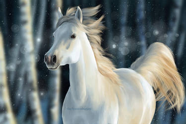 Horse in Winter by the-frozen-bunny