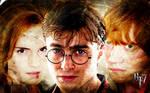 Harry Potter Trio DH