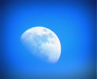 Luna by begaldog