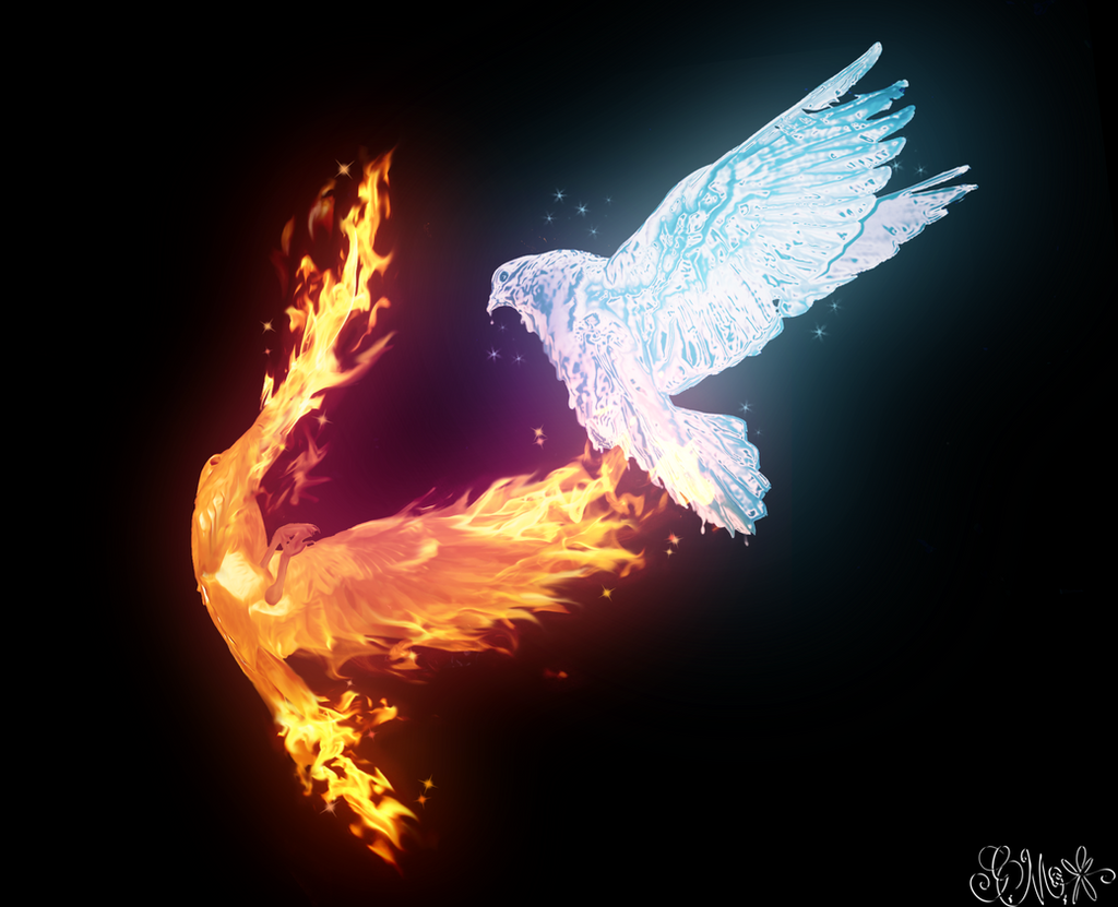 Fire Vs Ice by Grace-Likes-Cake on DeviantArt