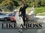 Like A Boss EDIT