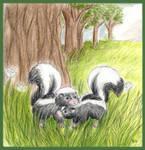 Love Between Skunks