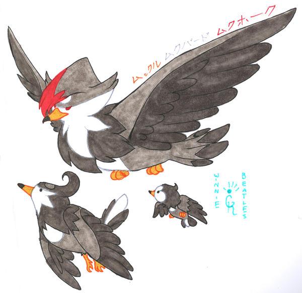 Starly.Staravia.Staraptor by Porcubird on DeviantArt