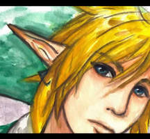Link close-up by Link-fizzle