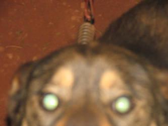 Chun-Li's ghost's eyes by Kiba-rules