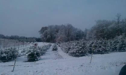 Snow road 2 by Kiba-rules