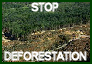 Stop Deforestation by environment