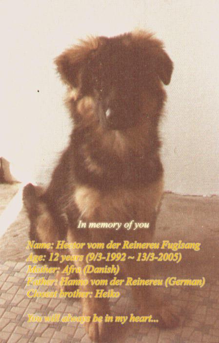 vonPipkin's Profile Picture
