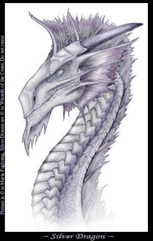 Silver dragon - headshot by vonPipkin