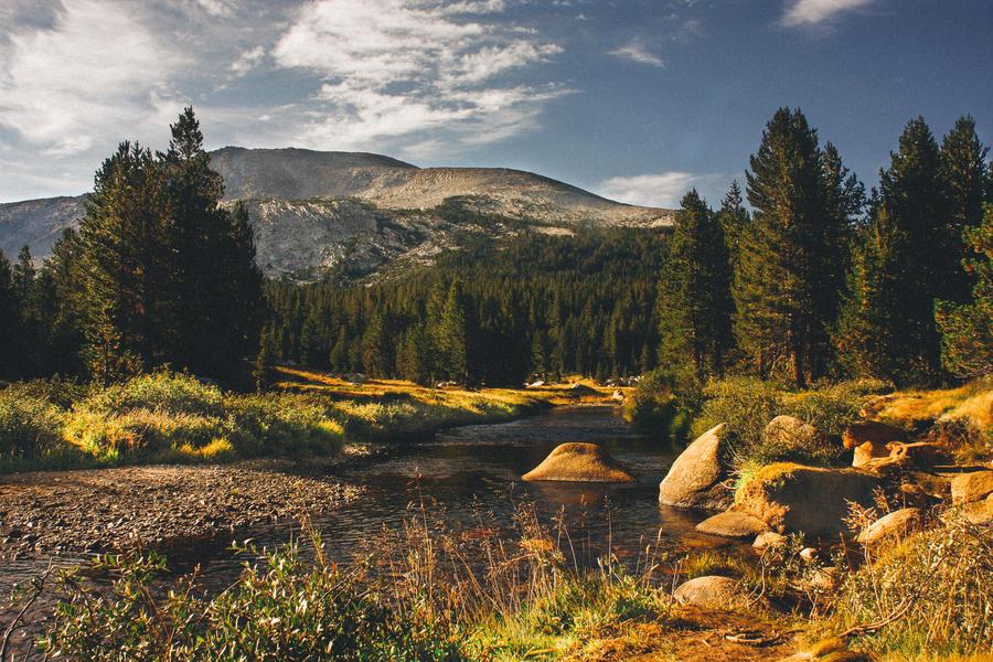 Yosemite by Swissvoice