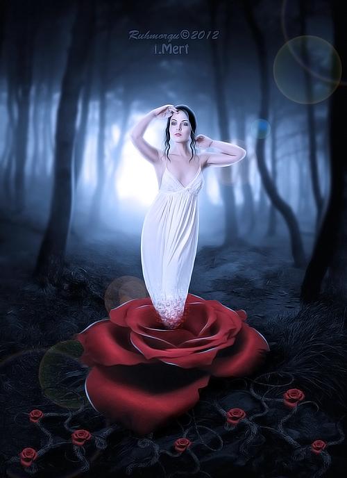 The Rose Lady By Imerttmyksl On Deviantart