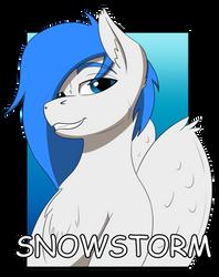 Snowstorm (Con badge) by WCNimbus