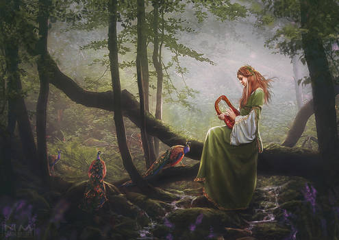 the song of the forest