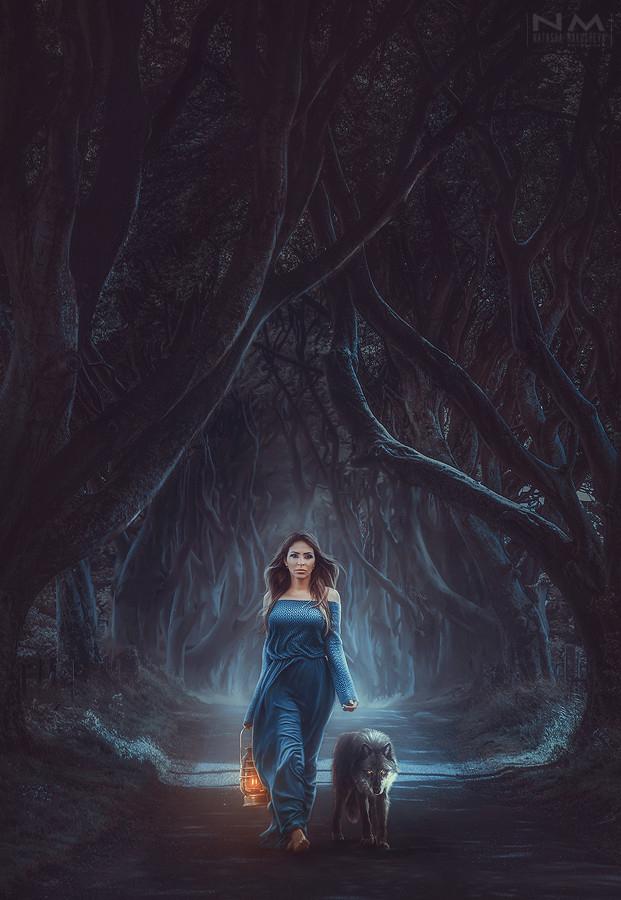 wolf by Makusheva