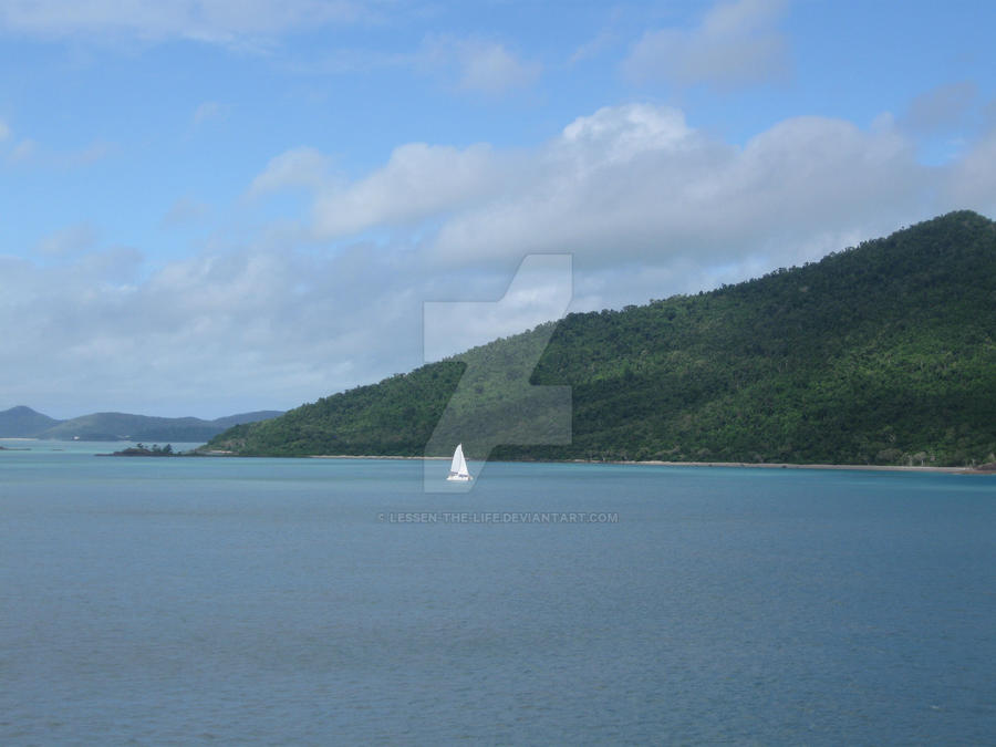 art airlie beach brothel