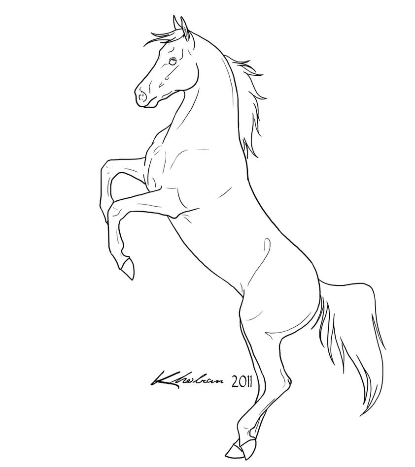 rearing horse lineart by kholran on deviantart