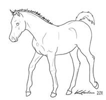 Foal Lineart by Kholran
