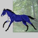 VHR- Blue Fox TB