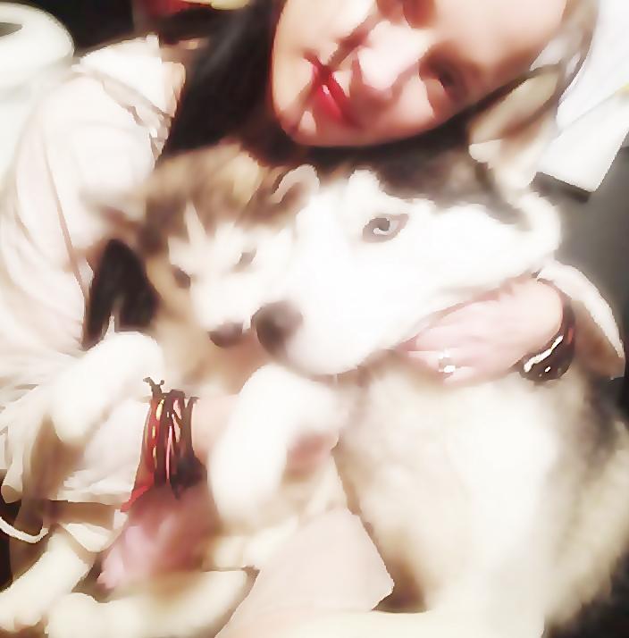 Puppy love :heart: by TheXxxxSmoo
