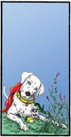 Krypto Super Dog.