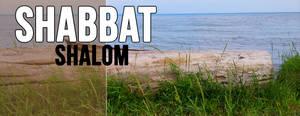 Shabbat Cover 22