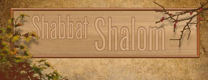 Shabbat Cover 24