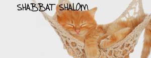 Shabbat Cover 25
