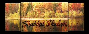 Shabbat Cover 29