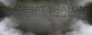 Shabbat Cover 33