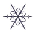 Visual Snowflake