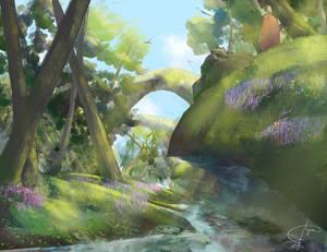 Forest Creek Concept