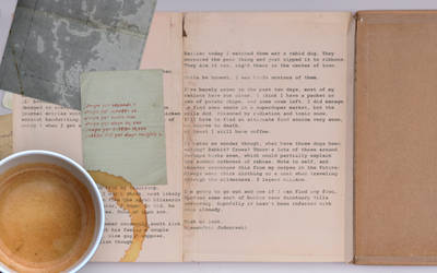 Fallout FROST Journal: Entry 2, Page 2