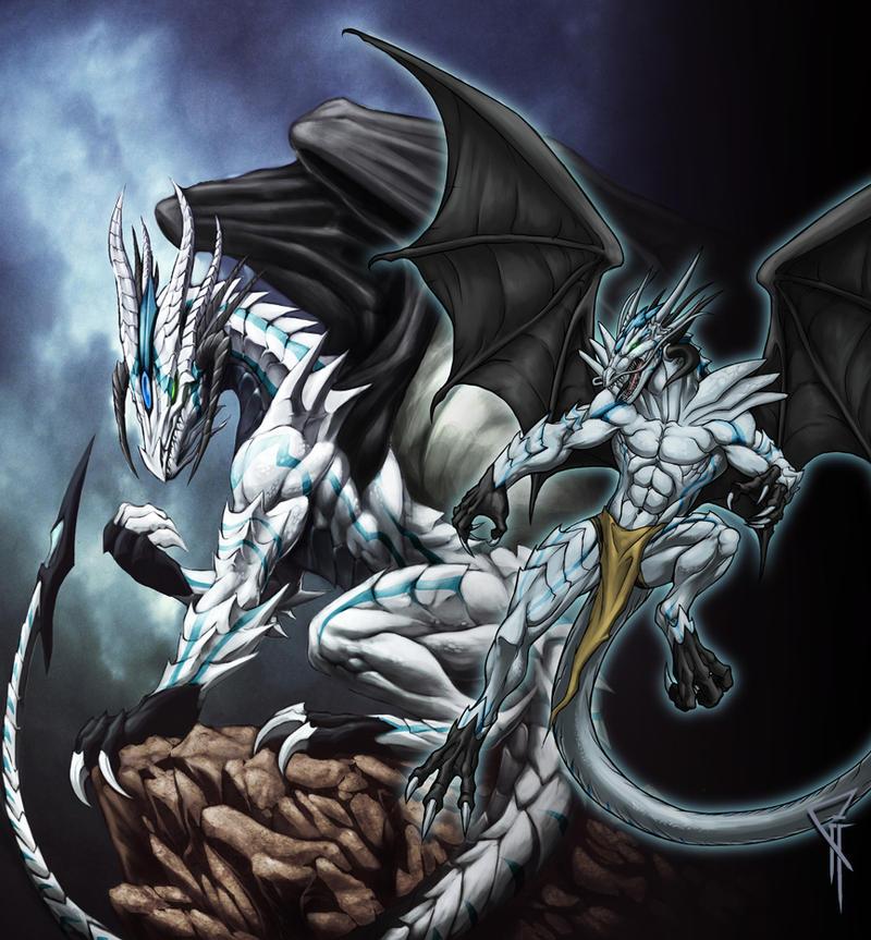 kizuoa dragon forms by chaos draco on deviantart