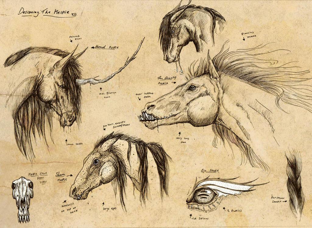 Kelpie design sheet 2 by TheJasIllustrator