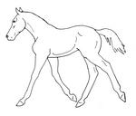 Trotting Foal Line Art