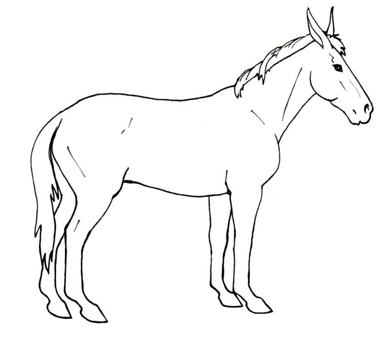 Line Drawing Donkey : Racing mule line art by murasaki on deviantart