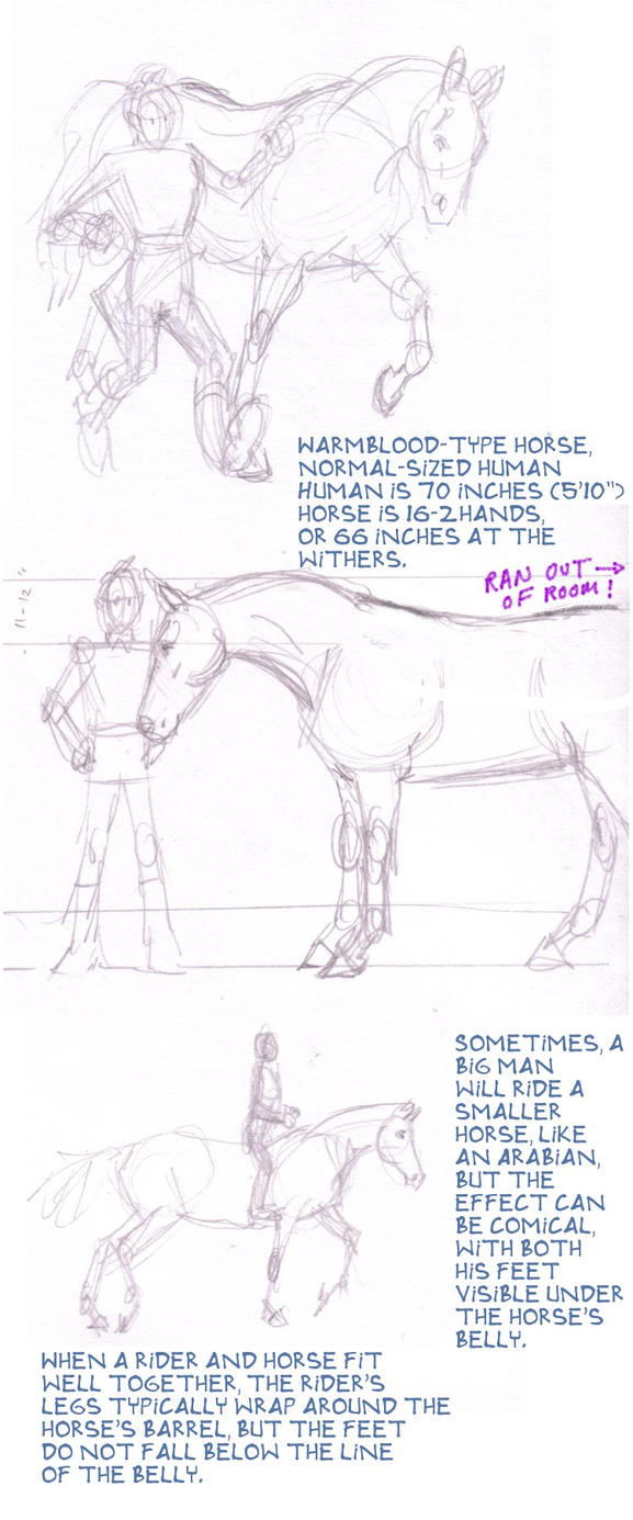 Human Height Chart Comparison Human Equine Height Comparison