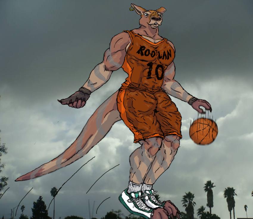 Muscle male basketball kangaroo by animagusurreal on DeviantArt