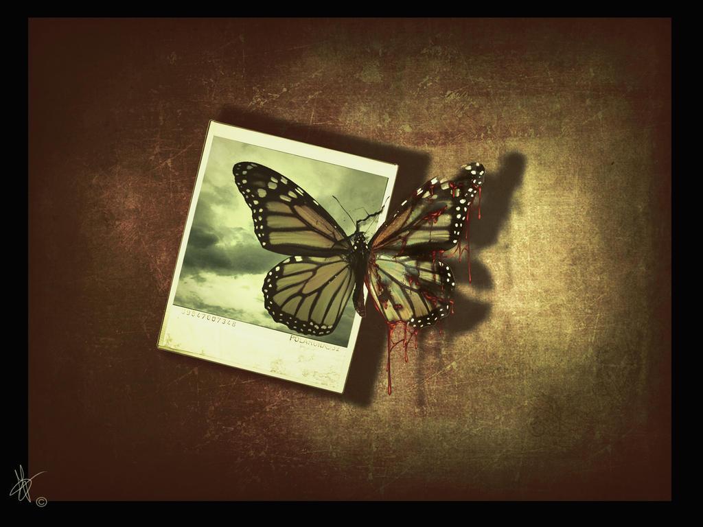 Hope by secret-fantasy