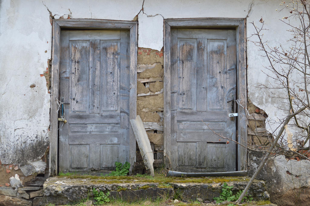 Old Doors by g0mix